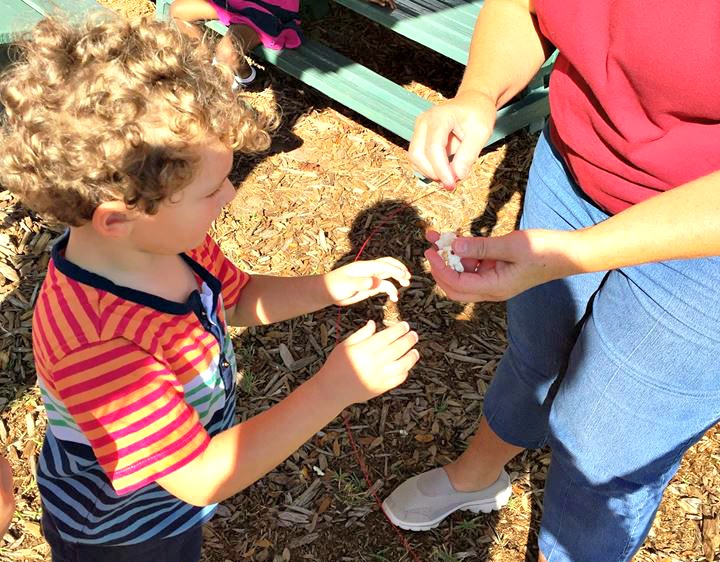 Suntree Montessori School - Melbourne, FL