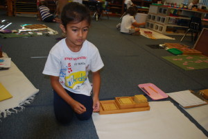 Suntree Montessori Receives Perfect VPK Readiness Score