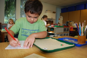 Montessori Transitions Into, Within and Beyond